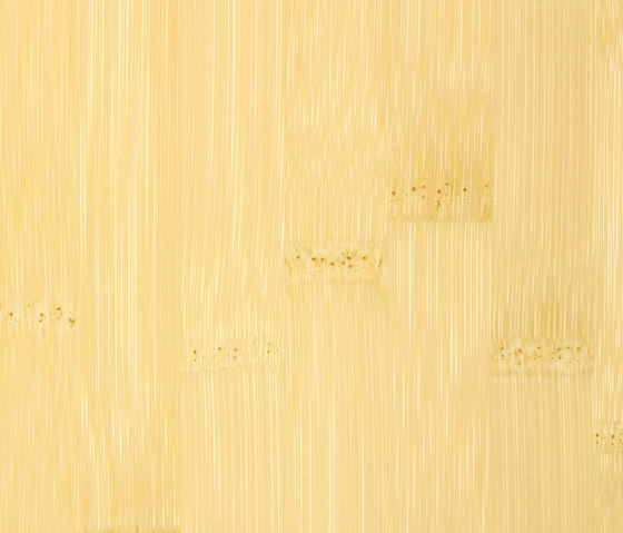 Solid panel plainpressed natural by MOSO bamboo products | Bamboo panels