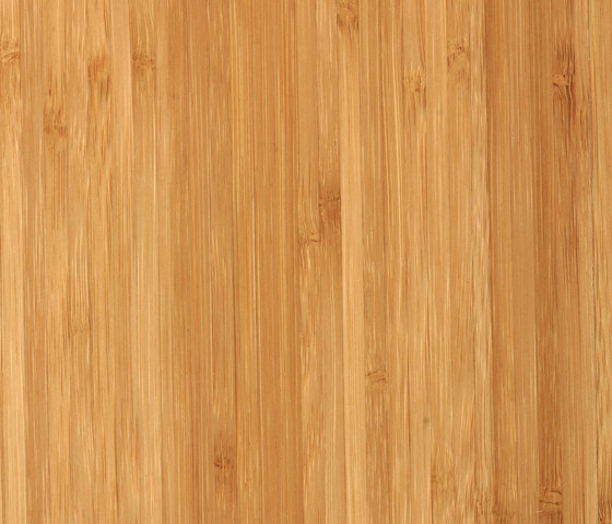 Solid panelsidepressed caramel by MOSO bamboo products | Bamboo panels