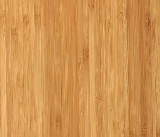 Solid joist sidepressed caramel by MOSO bamboo products | Bamboo panels
