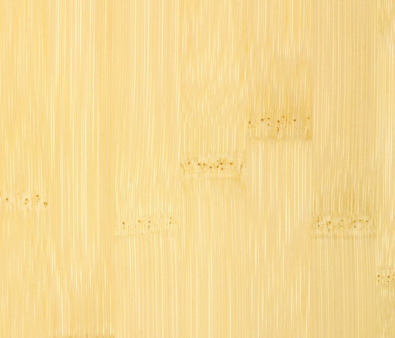 Solid joist plainpressed natural by MOSO bamboo products | Bamboo panels