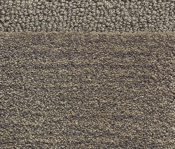 Classic Dove Grey 5004 by Kasthall | Rugs / Designer rugs