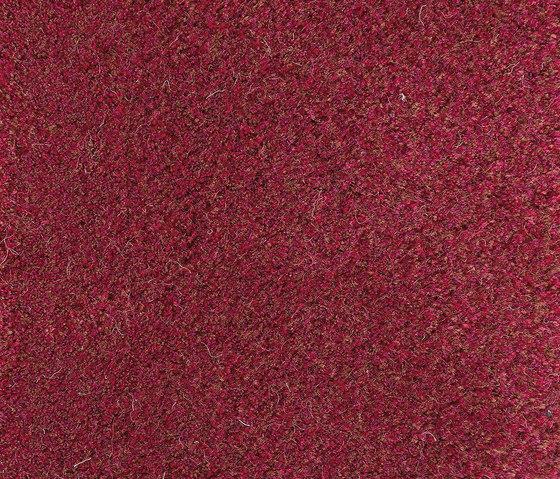Velvet Peony 610 by Kasthall | Rugs / Designer rugs