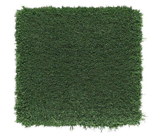 Velvet Pearl | Emerald Green 301 by Kasthall | Rugs / Designer rugs