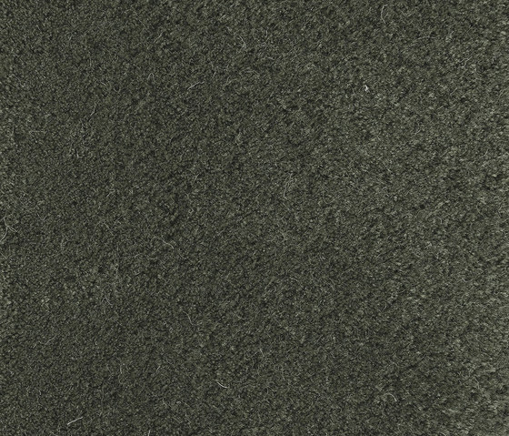 Velvet Hertiage Green 300 by Kasthall | Rugs / Designer rugs