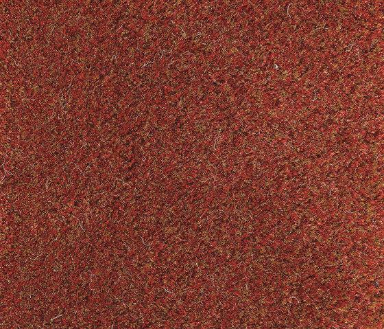Velvet Shimmering Papaya 140 von Kasthall | Formatteppiche / Designerteppiche