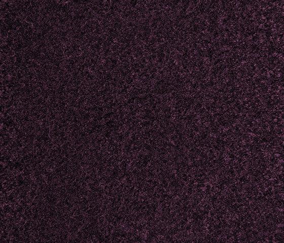 Velvet Purple Plum 620 by Kasthall | Rugs / Designer rugs