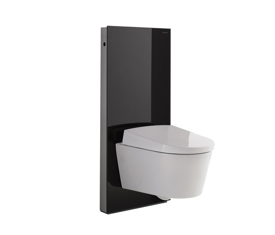 geberit monolith by geberit plus sanitary module for wcs. Black Bedroom Furniture Sets. Home Design Ideas