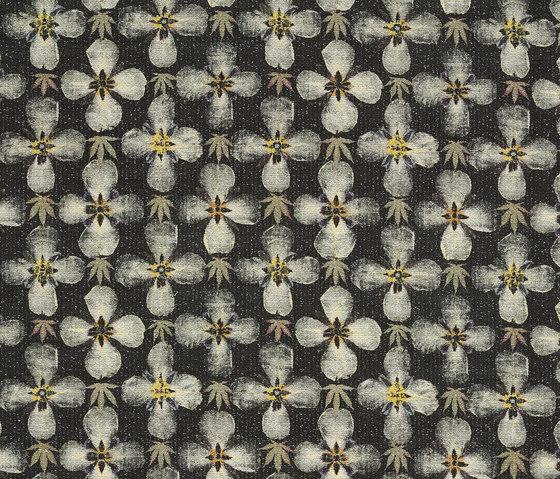 Herbarium by Kasthall | Rugs / Designer rugs