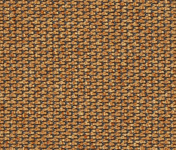 Eco Pur 3 07146 de Carpet Concept | Moquetas