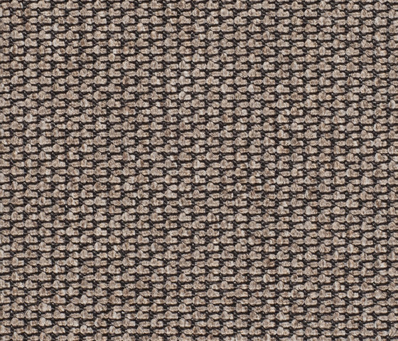 Eco Pur 3 40188 by Carpet Concept | Carpet rolls / Wall-to-wall carpets