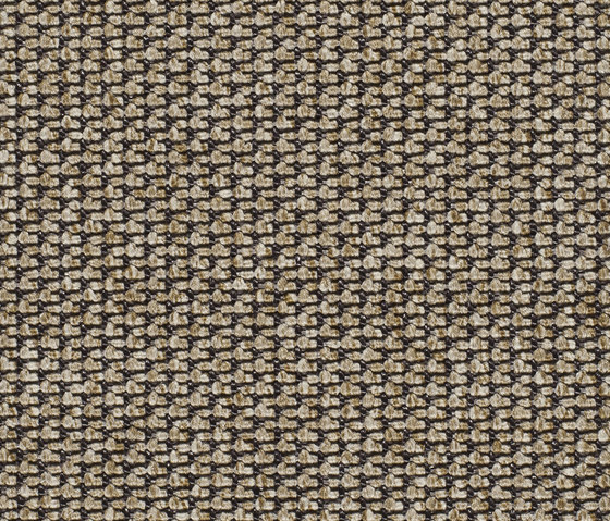 Eco Pur 3 40189 by Carpet Concept | Carpet rolls / Wall-to-wall carpets