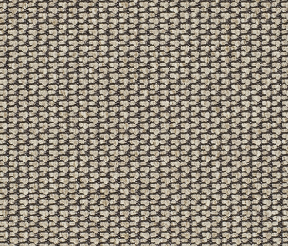 Eco Pur 3 40190 by Carpet Concept | Carpet rolls / Wall-to-wall carpets
