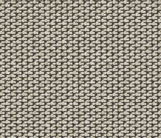 Eco Pur 3 40191 by Carpet Concept | Carpet rolls / Wall-to-wall carpets