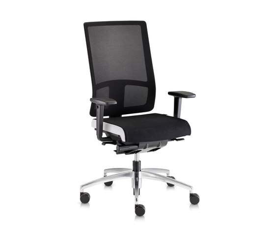Sitagpoint Mesh Funktionsdrehstuhl by Sitag | Task chairs