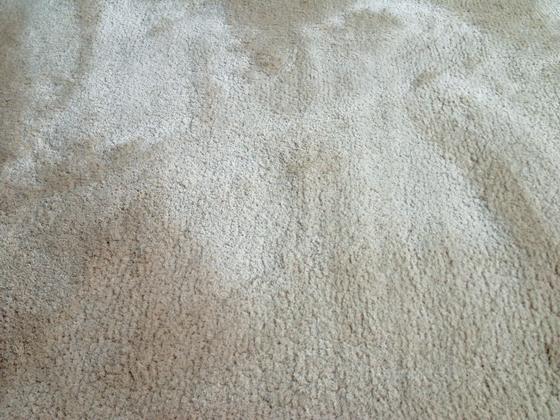 Coboll by JoV | Rugs / Designer rugs
