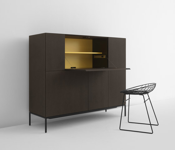 Vision Elements jubilee cabinet by Pastoe | Sideboards