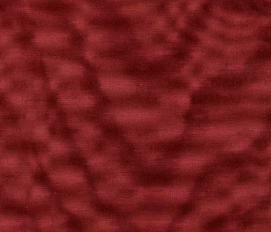 Amoir Libre col. 005 by Dedar | Fabrics