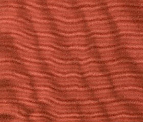 Amoir Libre col. 006 by Dedar | Fabrics