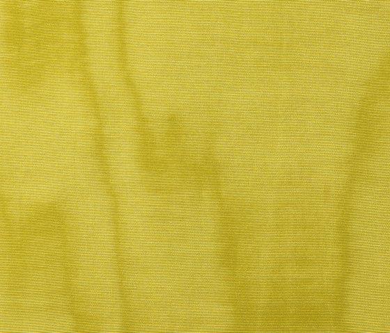 Amoir Libre col. 007 by Dedar | Fabrics