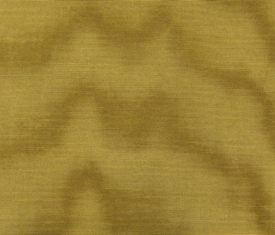 Amoir Libre col. 008 by Dedar | Fabrics