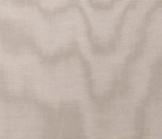Amoir Libre col. 015 by Dedar | Fabrics