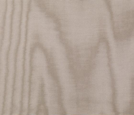 Amoir Libre col. 018 by Dedar | Fabrics