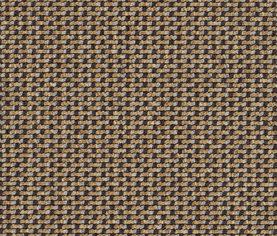 Lay 6966 by Carpet Concept | Wall-to-wall carpets