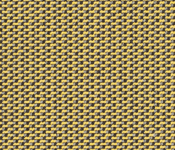 Lay 7153 by Carpet Concept | Wall-to-wall carpets