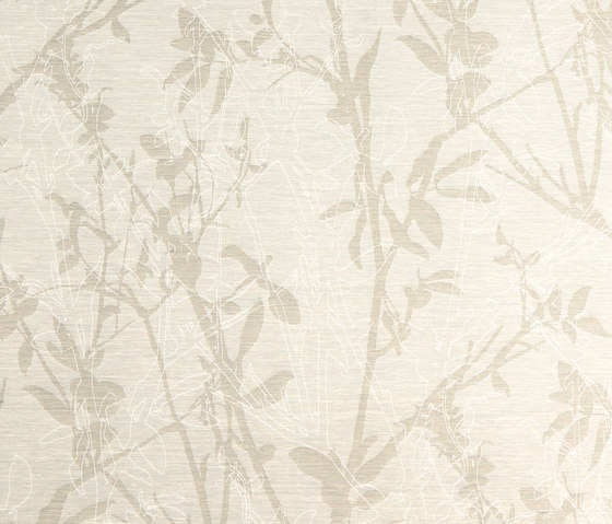 Botanic  113029 Iris Silverbell by ASANDERUS | Wall coverings