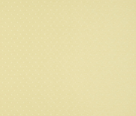 Bukhara 213027 Argan Old Gold by ASANDERUS | Wall coverings / wallpapers