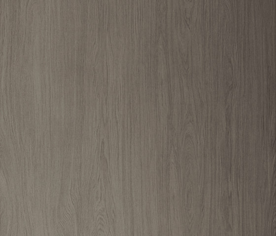 Timber | Timber Ash by Neolith | Ceramic tiles