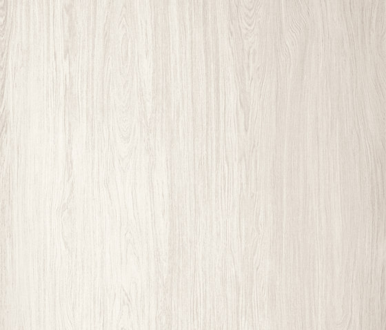 Timber |Timber Ice by Neolith | Ceramic tiles