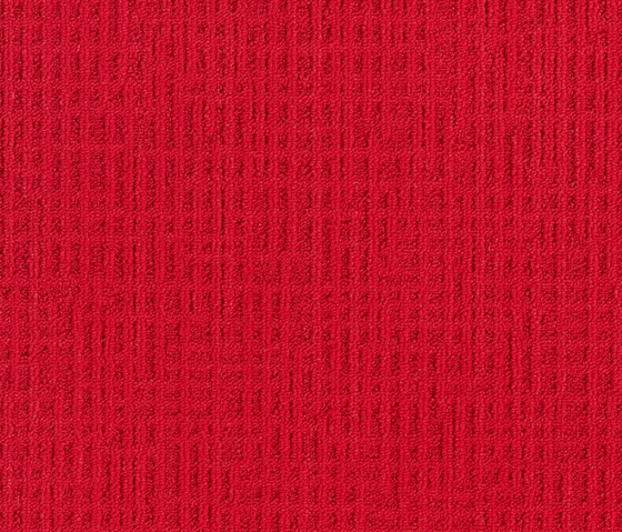 Monochrome 346719 Gerbera de Interface | Baldosas de moqueta