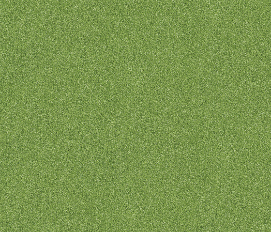 Polichrome 7597 Sycamore by Interface | Carpet tiles