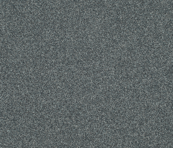Polichrome 7556 Chinchilla by Interface | Carpet tiles