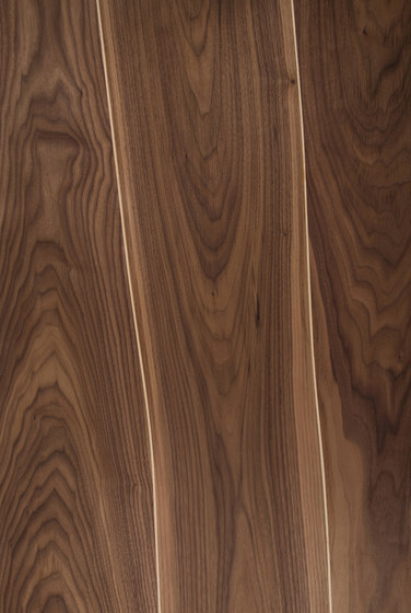 Veneer Surface Walnut with Maple Inlay by Boleform | Wood veneers