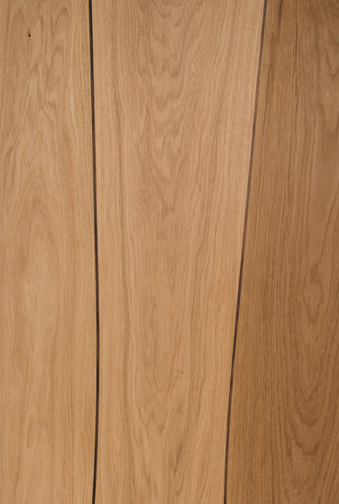 Veneered panel Oak for furniture manufacturing with walnut inlay by Boleform | Wood veneers