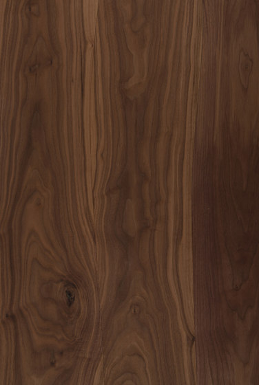 Pannelli impiallacciati non bisellati noce per fabbricazione mobili di Boleform | Piallacci