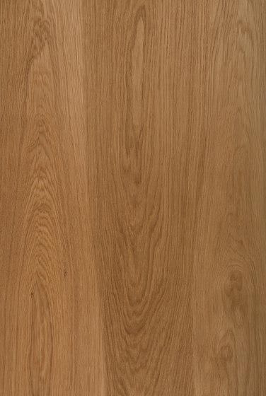 Worktop Oak with oak inlay by Boleform | Kitchen countertops