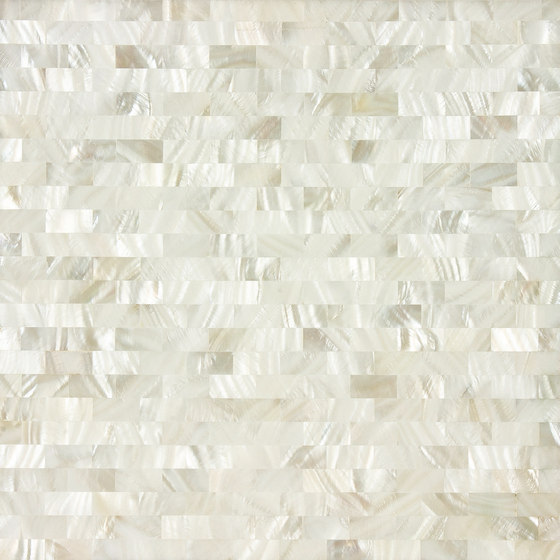White Rivershell Field Tile by Artistic Tile | Wall mosaics