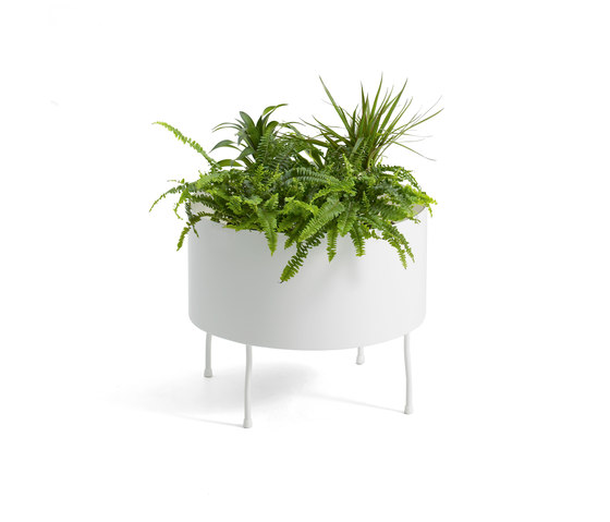 Green Pedestals by OFFECCT | Plant holders / Plant stands