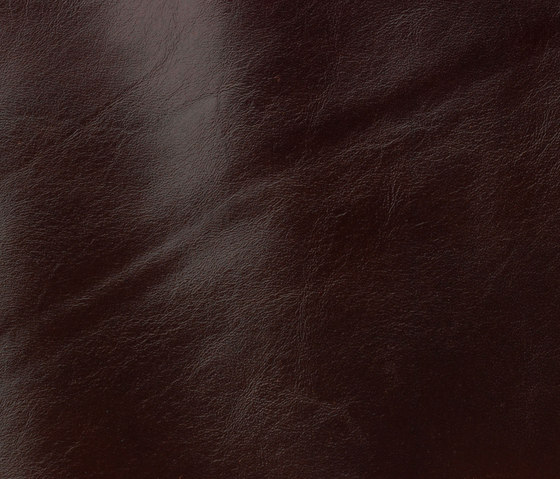 Classic 811 ebony by Gruppo Mastrotto | Natural leather