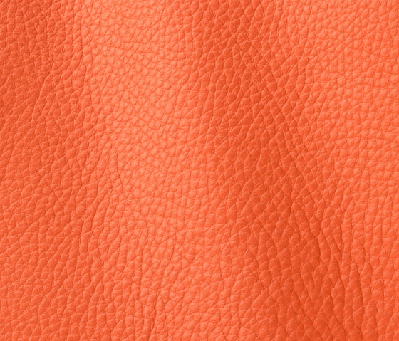 Atlantic 536 coral by Gruppo Mastrotto | Natural leather