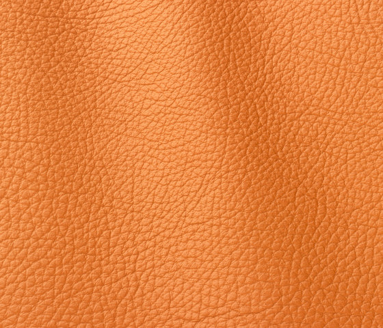Atlantic 511 arancio by Gruppo Mastrotto | Natural leather
