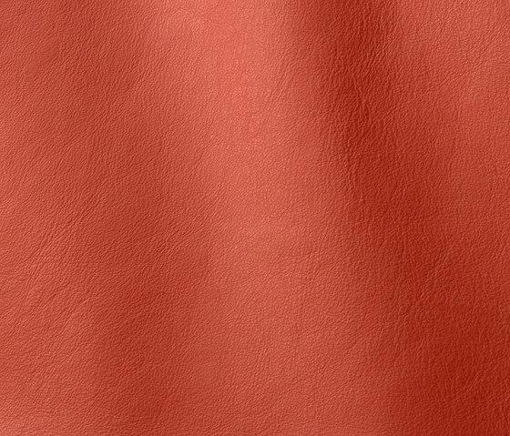 Linea 613 mattone by Gruppo Mastrotto | Natural leather