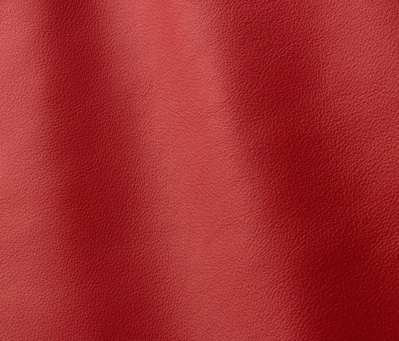 Linea 657 rosso antico by Gruppo Mastrotto | Natural leather
