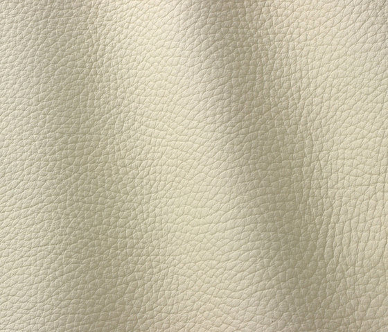 Atlantic 504 bianco by Gruppo Mastrotto | Natural leather