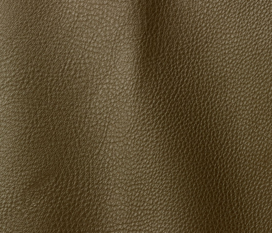 Vogue 6022 jungle by Gruppo Mastrotto | Natural leather