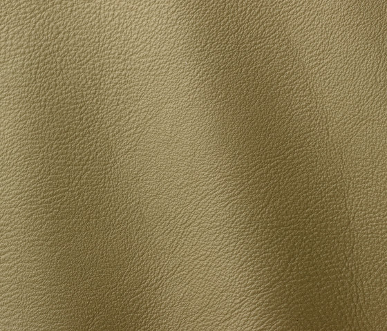 Prescott 255 terragon by Gruppo Mastrotto | Natural leather