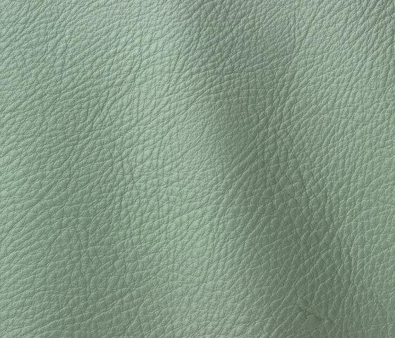 Prescott 259 oxide by Gruppo Mastrotto | Natural leather
